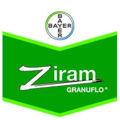 bayer-ziram-brandtag.jpg
